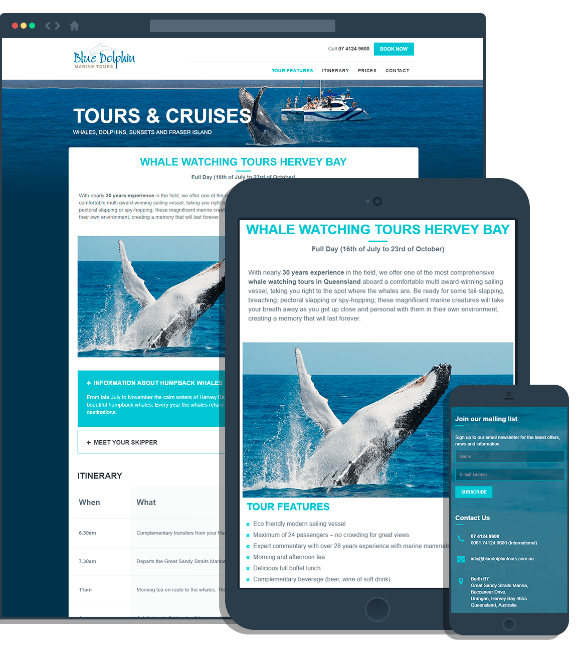 Blue Dolphin Marine Tours Landing Page